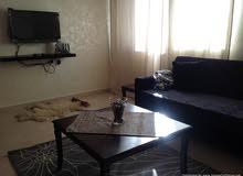 شقة مفروشة 55م في الجبيعة