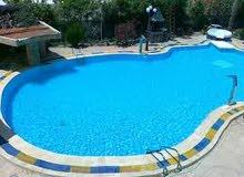 مستلزمات حمامات السباحة