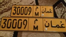 رقم مميز 30009