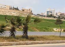 قطعة ارض للبيع شفا بدران بالقرب من جامعة العلوم التطبيقية حوض القصبات ياجوز