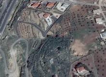 قطعه أرض من أراضي المصطبه حي النعيم جرش 3دنمات 400 متر بيت مسطح 200 متر طابقين