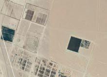 للبيع ارض زراعية فضاء خاليه مساحتها 100هكتار في اوجلة
