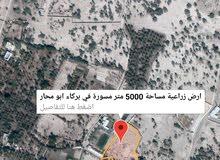ارض زراعية روعه ولاية بركاء منطقة ابو محار مسوره بالكامل المساحة 5000 متر
