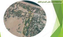 مزرعه للإيجار أو الاستثمار في شمال الباطنة على الشارع العام مباشرة