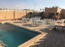 مزرعة مميزة للايجار اليومي الموقع: طريق المطار- خلف جامعة الزيتونة   مساحة 2دونم