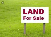 للبيع ارض في الذخيرة شارعين وزاوية بموقع متميز
