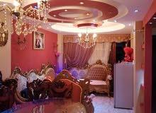 شقة مميزه للبيع بالإسكندرية _ الفلكي متفرع من ش 16 الملك