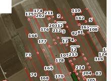 ارض للبيع في ام قيس حوض المعترض مساحة 7 دونمات