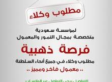مطلوب وكلاء لشركة سعودية متخصصة في بيع التمور والمعمول الفاخر بجميع أنواعه في كل