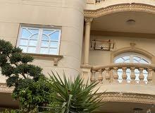 شقة للأيجار بالحي الخامس - المنطقة الخامسة