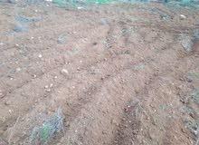 ارض للبيع في جرش وسط مزارع شاليهات