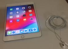 Ipad Mini 4 128 wifi Only