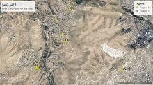 قطع اراضي للبيع في منطقة ضاحية البستان - الزرقاء