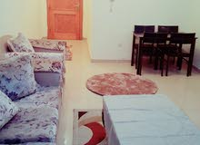 More than 5 apartment for rent - Al Qasemiya