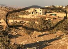 قطعة أرض زراعيه وسكنيه مساحتها 3,560 دونم في منطقة مرتفعه في الرايه جرش ومساحتها 3,650