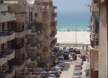 شقة بالروف 4 نوم مسجلة في شاطئ النخيل سابع نمرة للبحر