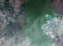 قطعة ارضية مساحتها 116 هكتار