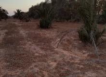 قطعة ارض للبيع مساحتها 3600 متر..
