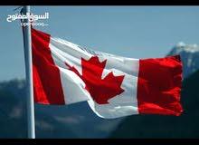 مطلوب فيزا ع كندا