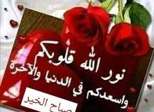 ارض للبيع عنيبه بالقرب من مزرعه محمد نوح القضاه