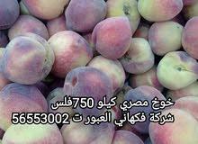 شركة فكهاني العبور للخضار والفواكه الطازجة