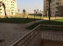 apartment is available for sale - Madinaty