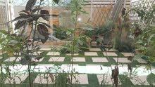 Flat fot rent in amwaj home1 Bedroom 1 bathroom & hall kichin room Nice gardens