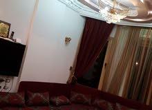 شقة مفروشة  بمدينة نصر - عباس العقاد