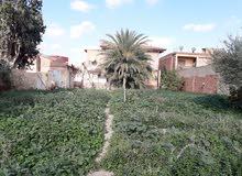 قطعة ارض للبيع مساحتها 840 متر مربع  بمدينة سيق ولاية معسكر