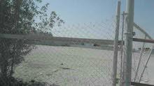 للايجار مخزن فى ميناء عبدالله مسكر ومكشف يوجد أمن وكهرباء