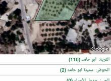 ارض للبيع في منطقة ابو حامد