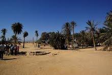 ارض للبيع او المشاركة بنسبة بالخمس لشراء اراضى للتقنين فى جنوب سيناء عيون موسى بالسويس
