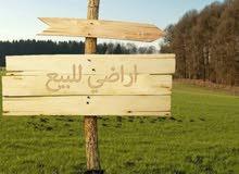 قطع أراضي منطقة صالحية العابد للبيع