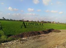 ارض للبيع في طريق المطار بالقرب من جامعة الشرق الأوسط بمساحة 501 م