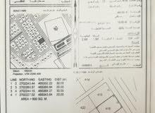 أرضين شبك في الملتقى المربع12ف أول المخطط جنبهن منازل قائمه