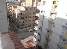 شقة وروف خاص 120م لكل طابق - للبيع في الاسكندرية شاطئ النخيل