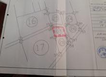 منطقة الوسيطة بالقرب من منتجع التلال الذهبية ويوجد بها 9قواعد للاستراحة وخريطة