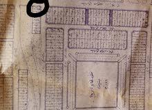 أرض للبيع بصك شرعي من المالك مباشرة في محافظة رجال ألمع