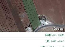 للبيع ارض 10 دونمات في منطقة رحاب