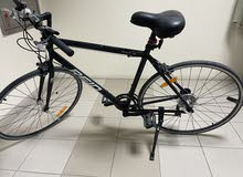 (R A P I D) Bicycle For Sale