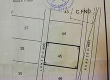 ارض للبيع في ولاية المضيبي