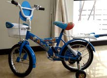 bicycle for the age 5+...