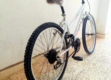 دراجة 24 للبيع