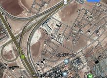 للبيع ارض 9 دونم في الطنيب شارع الميه مباشره