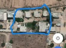 قطعة ارض نص هكتار عليها سبعة منازل امام شيل القرقني
