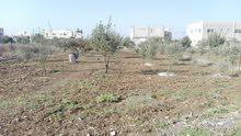 ارض سكنية وزراعيه للبيع لواء بني كنانه -عزريت