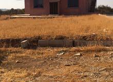 مزرعه 5 دونمات مع بيت ريفي للايجار او للبيع