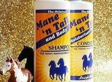 شامبو الخيول الاصلي