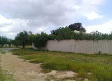 مزرعة للبيع بتونس(مقرن)