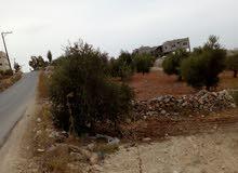 ارض للبيع في دير ابي سعيد